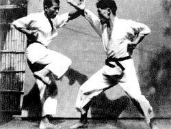 Геншин Хирониши - шотокан карате до